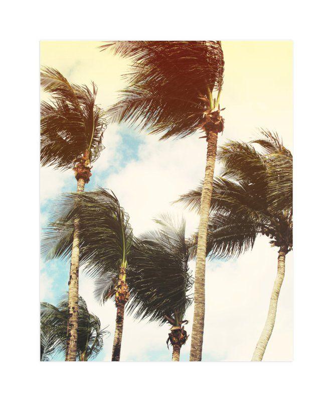 Home Star Designs on tag designs, fiesta designs, murphy home designs, star decorating ideas, meridian home designs, bus home designs, bear home designs, star books, arthur court designs, star clothing, love home designs, nate berkus home designs, jonathan adler designs, star land, michael aram designs, star house,