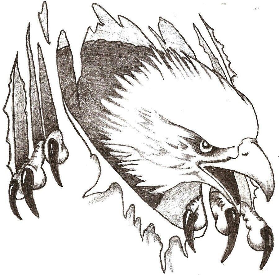 Stencils | Stencils | Eagle drawing, Pyrography patterns