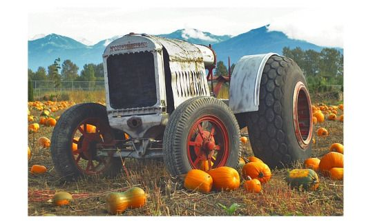 Where did all those pumpkins go? The tractor replied