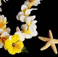 reputable site 9be2d fc3a4 Silk Flower leis. Little girls will love to string silk flowers. You can  add beads or cut a plastic straw into 1 2 in pieces to string as spacers  between ...