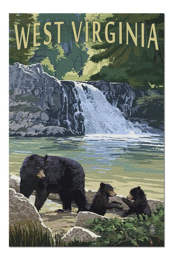 West Virginia - Waterfall and Bears (20x30 Premium 1000 Piece Jigsaw Puzzle, Made in USA!) #westvirginia