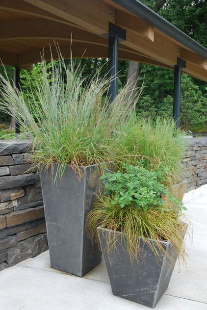 ornamental native grasses in grouping of pots - landscape ...