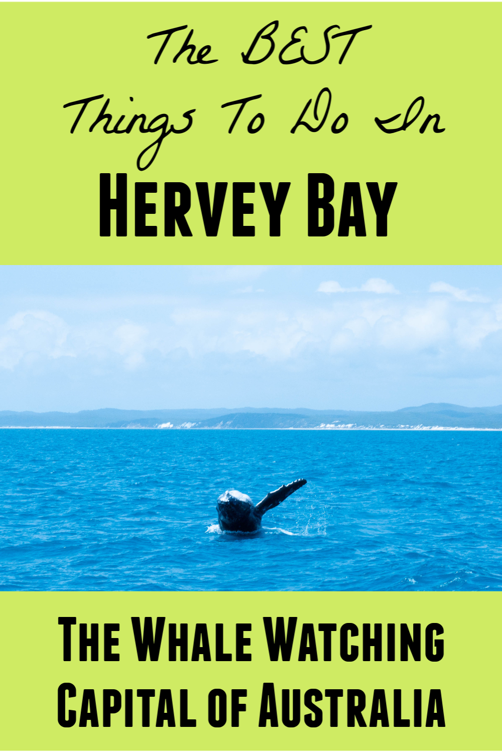 The Best Things To Do In Hervey Bay Alli S Grade Escape In 2020 Hervey Bay Whale Watching Australia Packing List