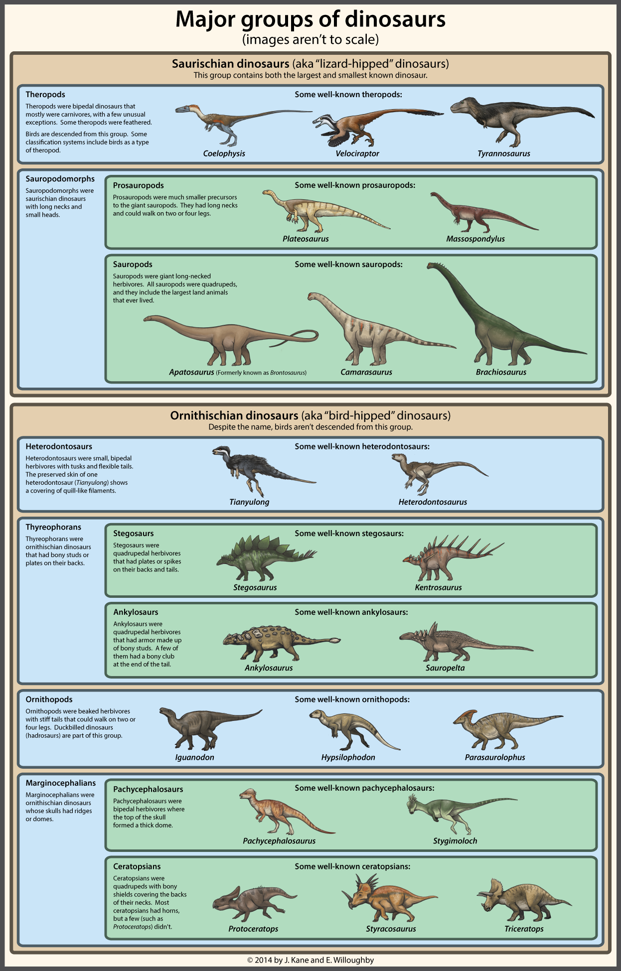 1000 images about dino on pinterest maze hidden pictures and  : dinosaur diagram - findchart.co