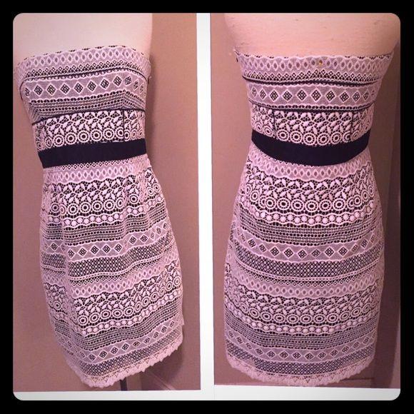 Cynthia Steffe Black and White Dress
