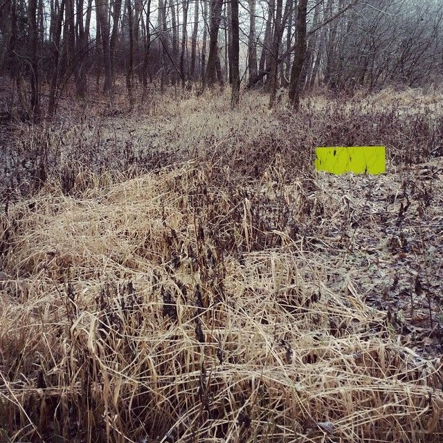 ACCENTS Land Art - Another amazing piece from AUTONE - very talented urban planner INSTAGRAM: @autone1  #accents #minimal #landart #landscape #photography #winter #frost #forest #temporary #contemporary #art #autone