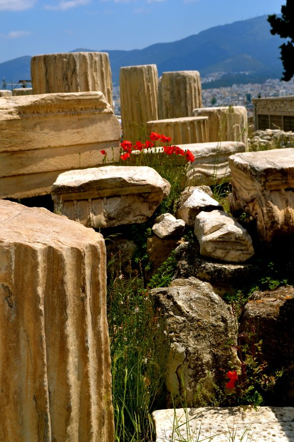 Ruins & Poppies, Athens, Greece