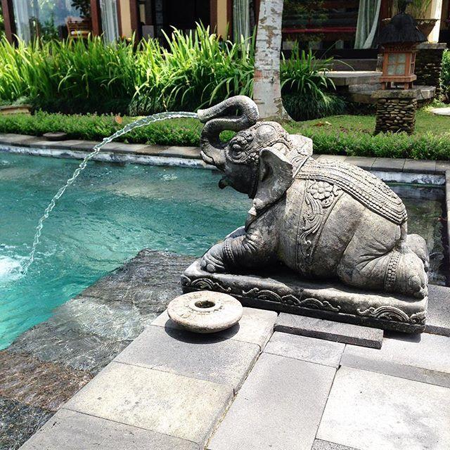 It's all in the details... #villacrush #exterior #interior #statue #elephant #bali #ubud #villabodhi #honeycombersbali