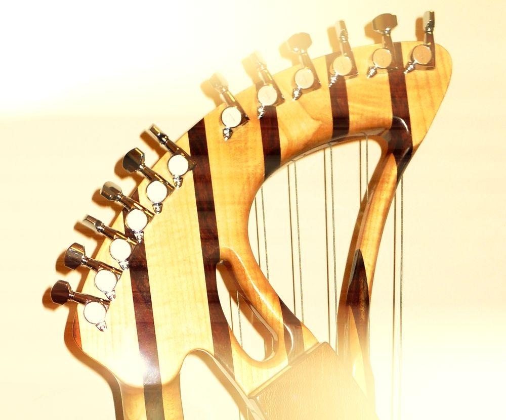 Tony Seeger harp guitar - Recherche Google
