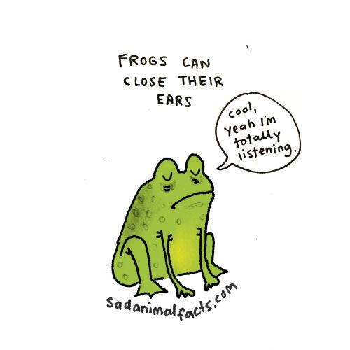 sadanimalfacts:  I've got some bad news about some types of frogs.   I know some people like this ;-)