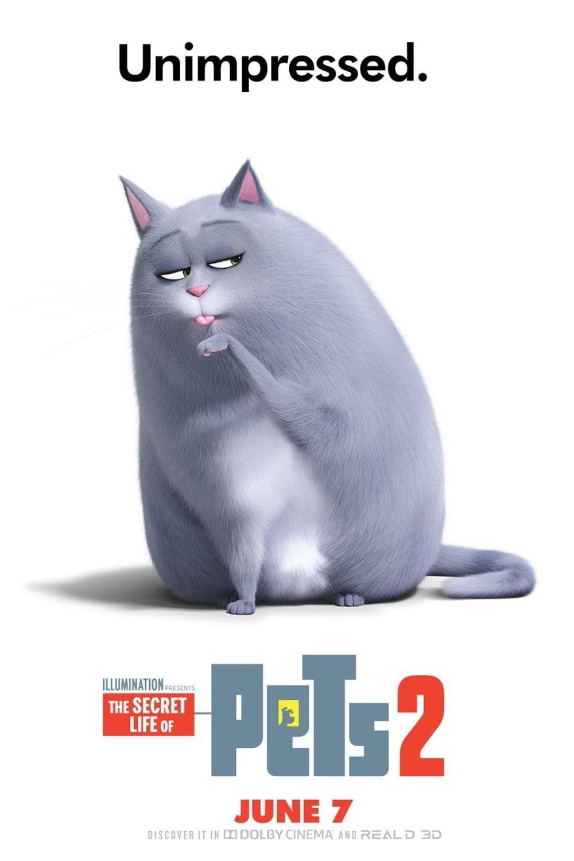 Film The Secret Life Of Pets 2 Cmplet En Francais Secret Life Of Pets Secret Life Pets