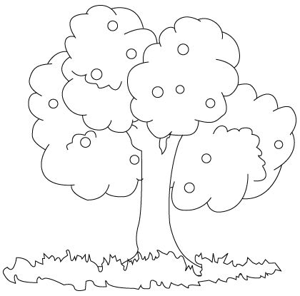 tree coloring sheet - Children Drawing Sheets