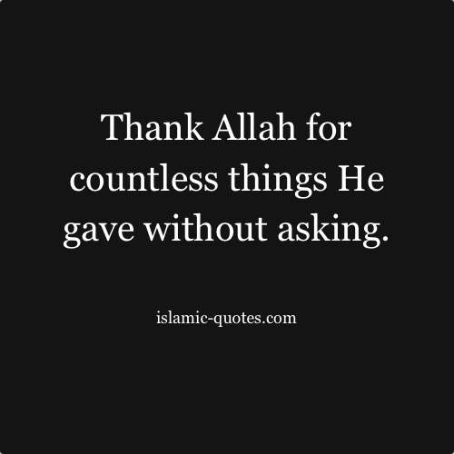 Allah Gives Us Food (My Allah Series Book 4)