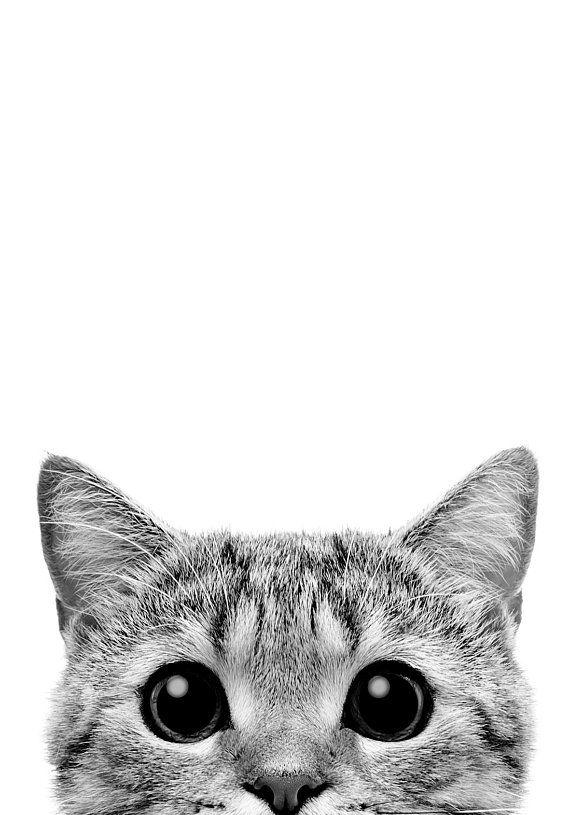 Kitty peeks PRINTABLE Poster black and white minimalist modern Print, Home Decor scandinavian Print, Digital Download