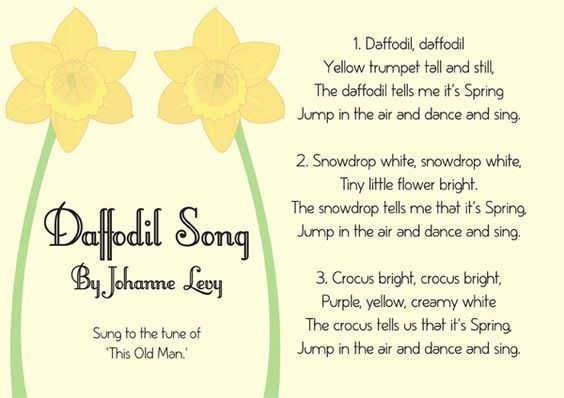 Illustrated Daffodil Song Sheet St David S Day Resource Free