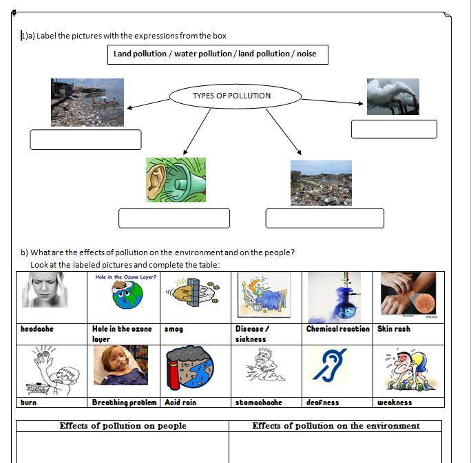 Pollution Worksheet | Science 4-6 | Worksheets, 4th grade ...