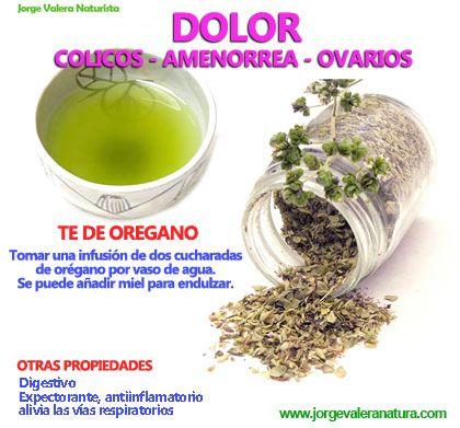 Dolor De Los Ovarios Te De Oregano Remedies Healthy Tips Food