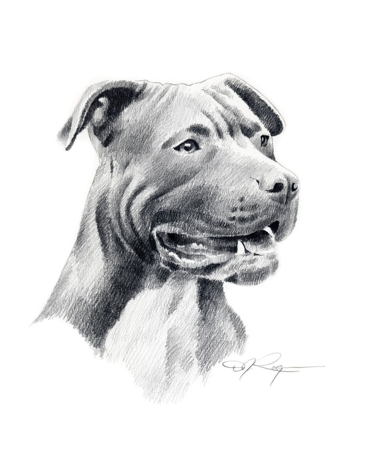 Uncategorized Drawing Pitbull dog drawing pitbull ideas pinterest and drawings pitbull