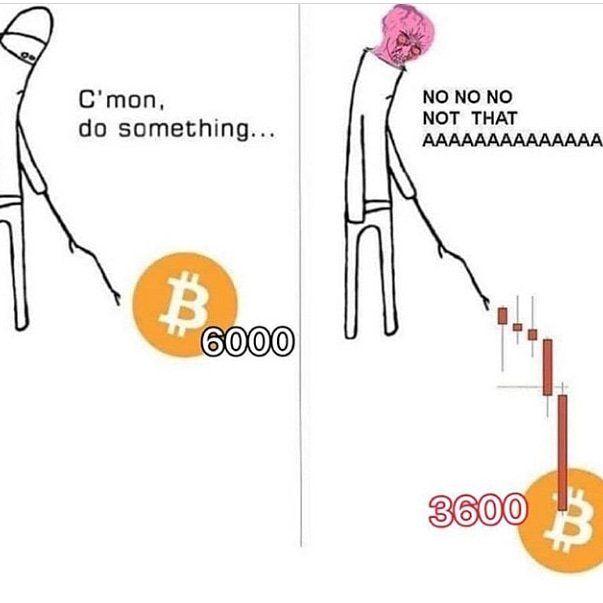 https://bitcoinlulz.com/pics/hey/   Memes, Pics, Something ...