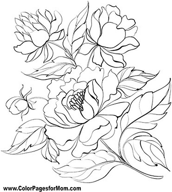 Flower Coloring Page 66 Flower Coloring Pages Coloring Pages