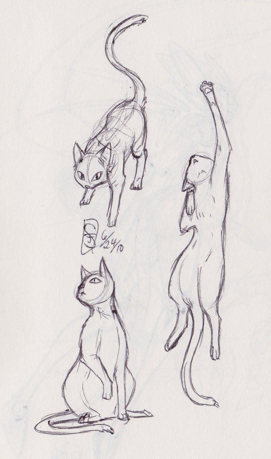 Anime Cat Girl Sketch Cat Drawing Chibi Body Cat Sketch