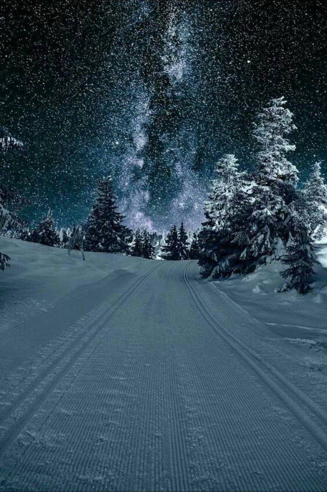 Winter Night Winter Scenery Winter Landscape Winter Scenes