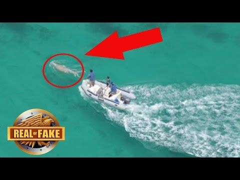 MERMAID CAUGHT ON TAPE PHILIPPINES - REAL OR FAKE ...