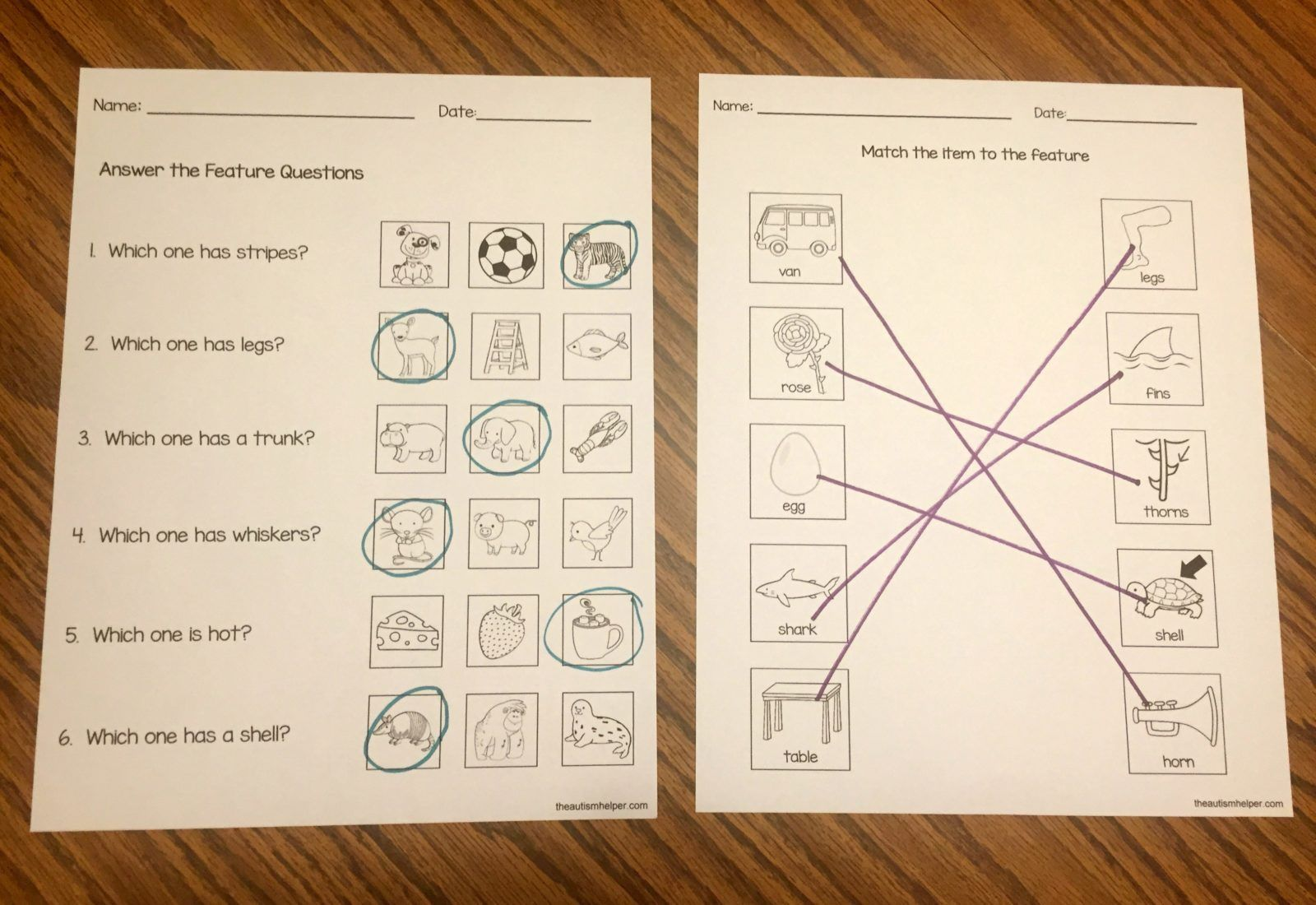 Free Feature Worksheets