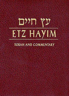 Robot Check Books To Read Online Torah Books