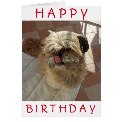 Shih Tzu Dog Birthday Card Birthday Pinterest