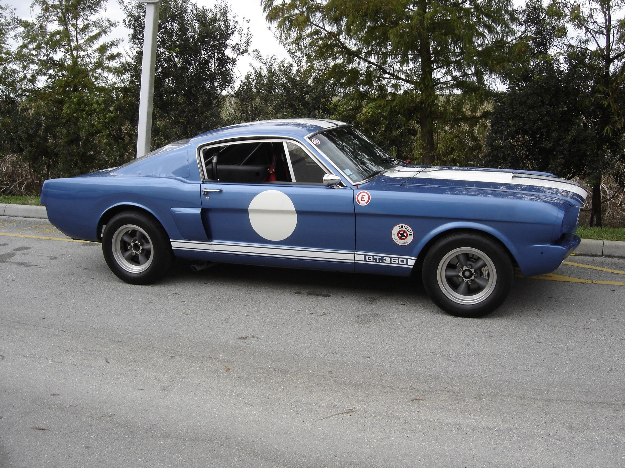 A super cool 1966 shelby gt 350 r spec