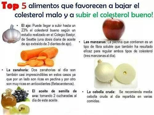alimentos para incrementar el colesterol bueno