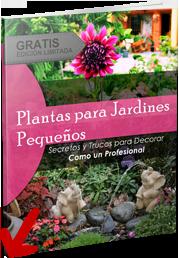 Jardines peque os con encanto decoraci n de jardines for Jardines pequenos con encanto