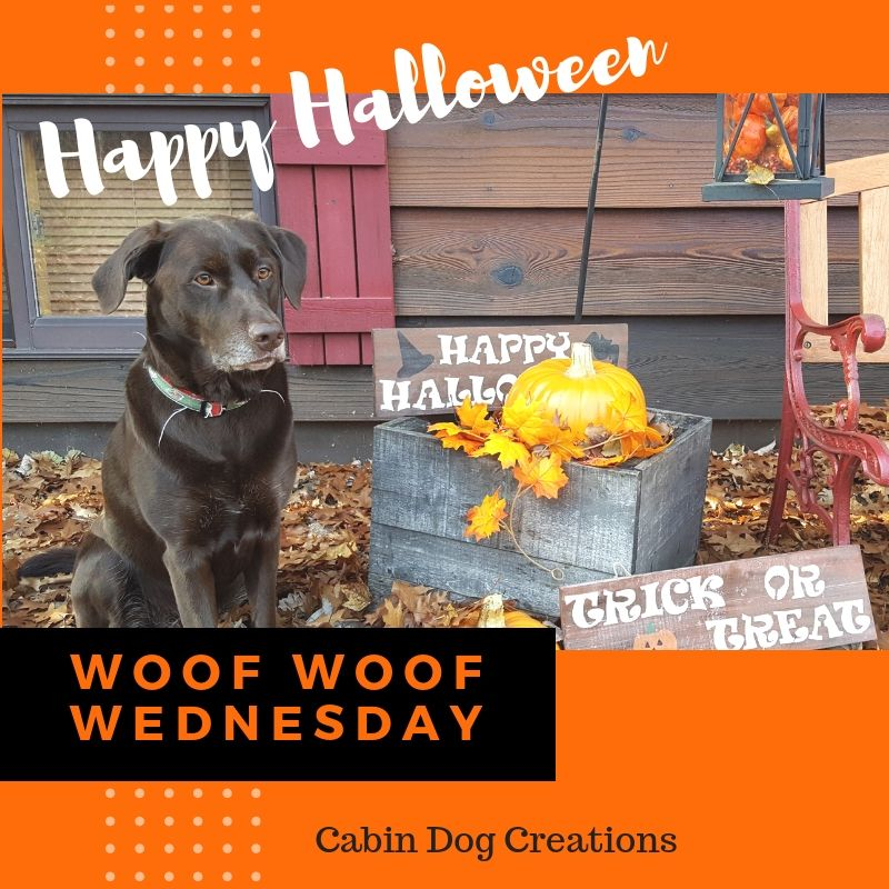 It's Woof Woof Wednesday! Happy Halloween from Cabin Dog