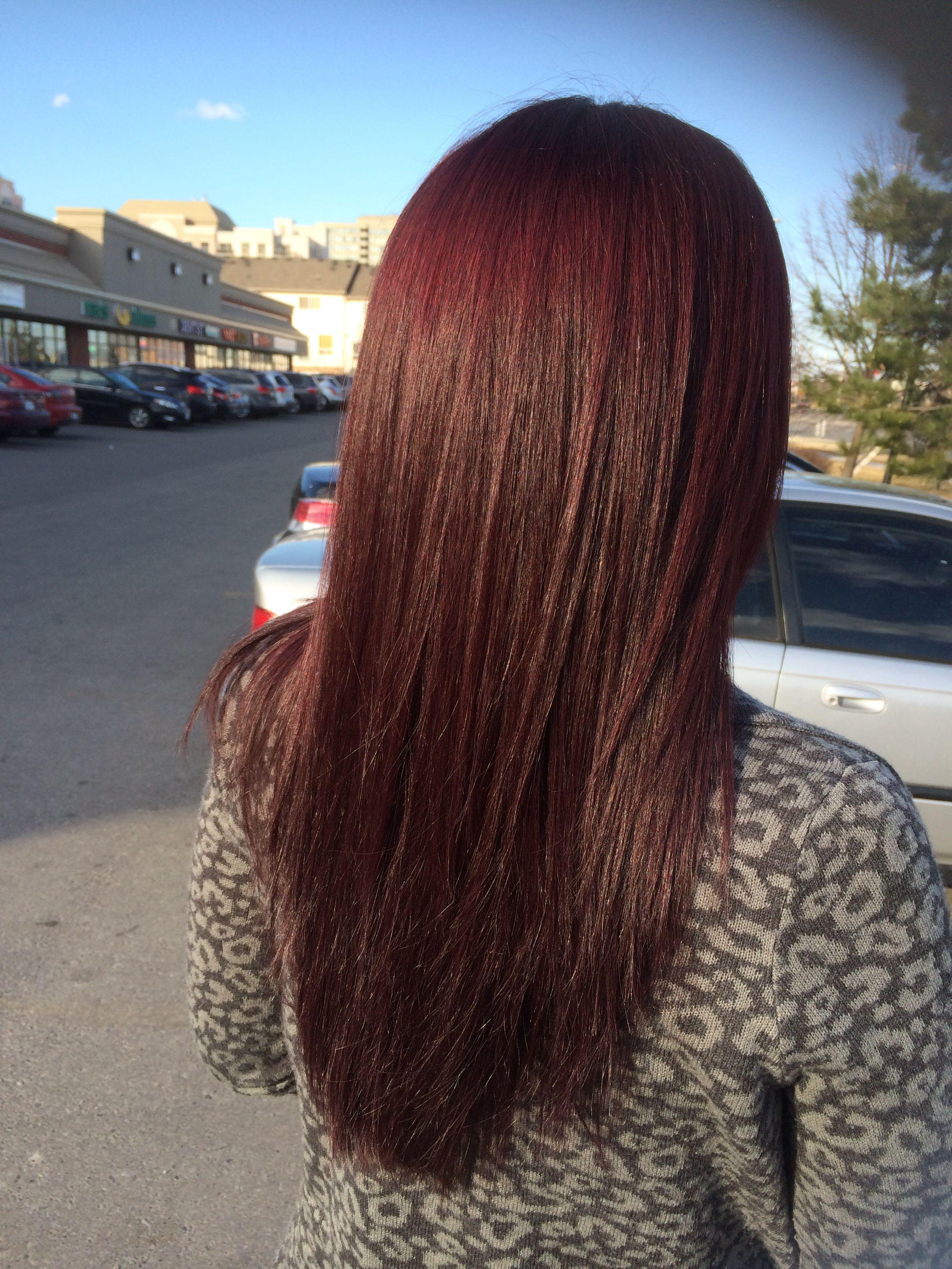 1000 Ideas About Mahogany Hair Dye On Pinterest Mahogany Hair
