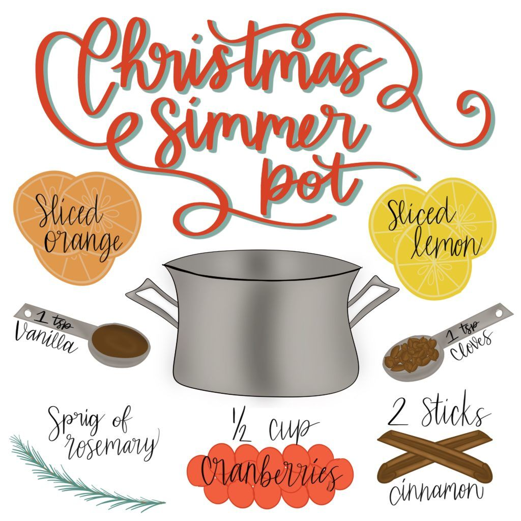 This Christmas Simmer Pot will make your House Smell Like Christmas in No Time! It's also makes ...