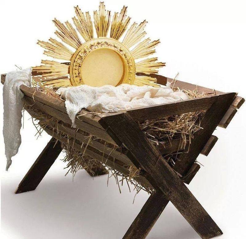 El Niño Dios se hace presente en cada Eucaristía. Ese es el milagro ...