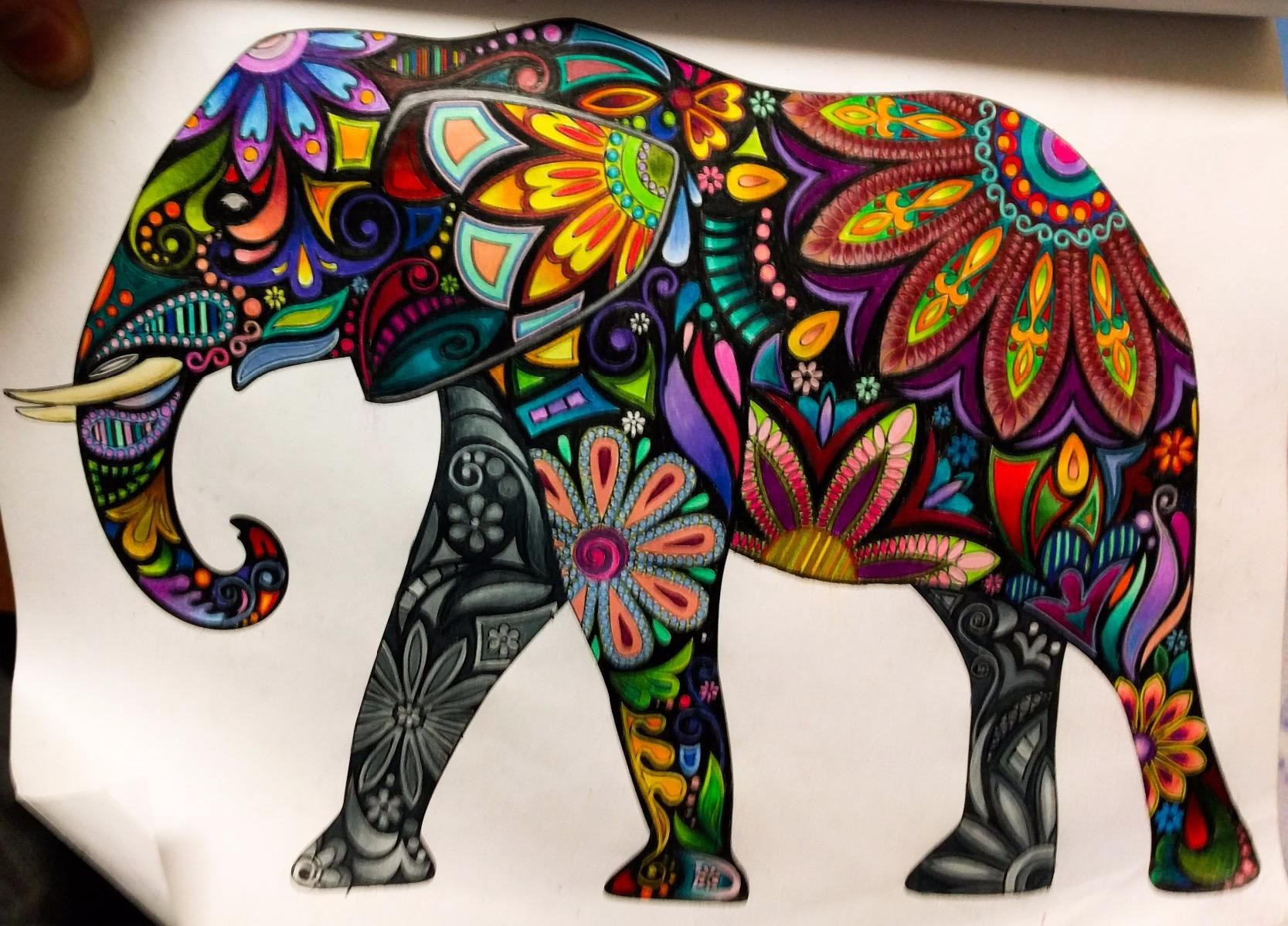 Amazon.com: Adult Coloring Book: Stress Relieving Animal Designs ...