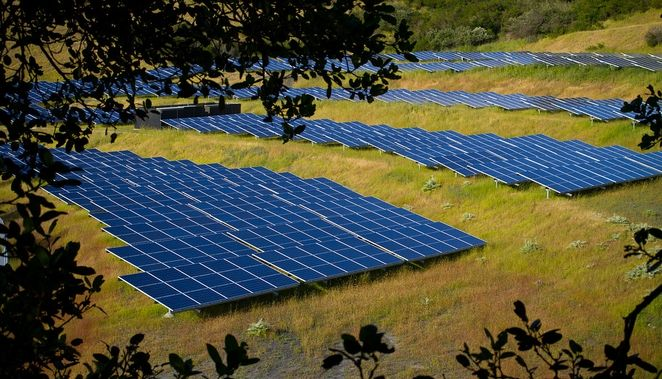 Solar Farms Can Enhance Biodiversity And Sequester Soil Carbon Too Solar Solar Panels Solar Projects