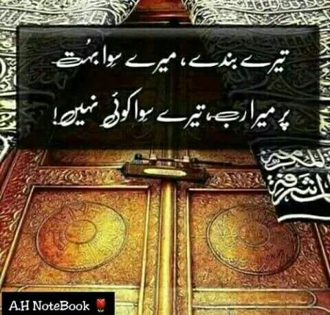 Pin by Asad Sher on asad | Urdu quotes, Urdu poetry, Quran