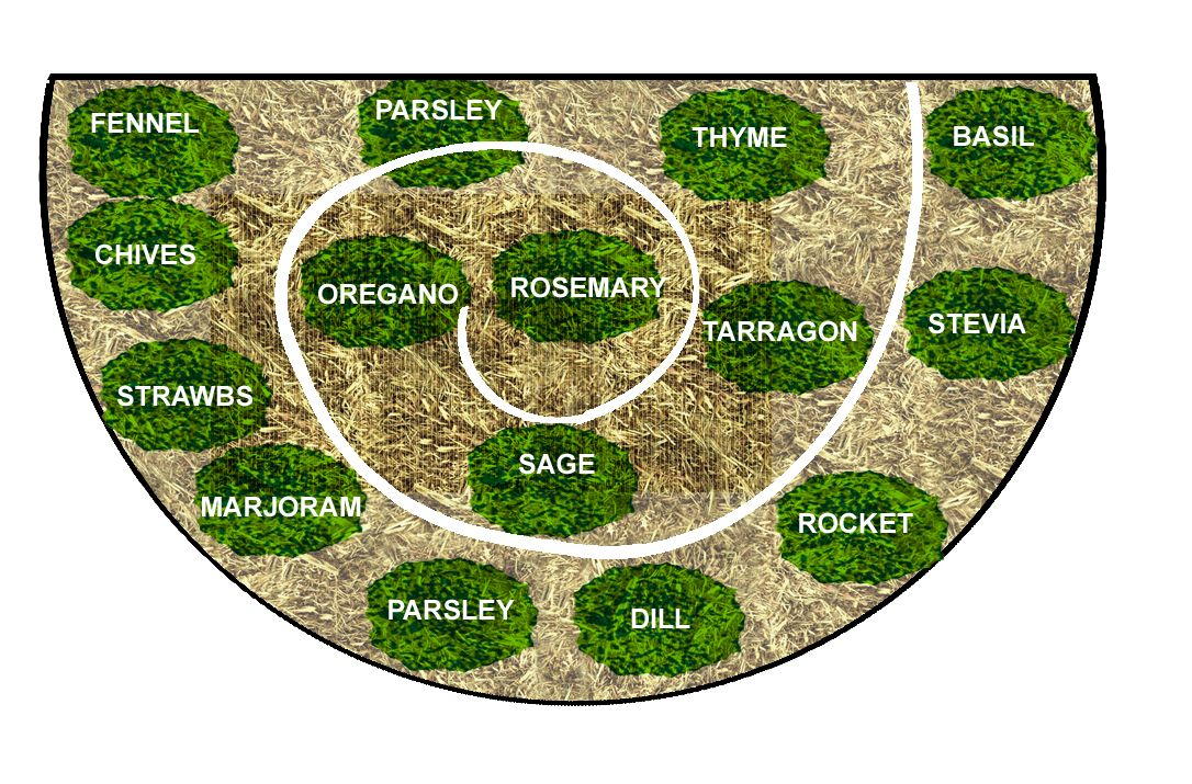 Spiral Herb Garden Plans Bee Has Resulted Inthe Creation Of A New Improved Herb Spiral Herb Spiral Permaculture Gardening Herbs