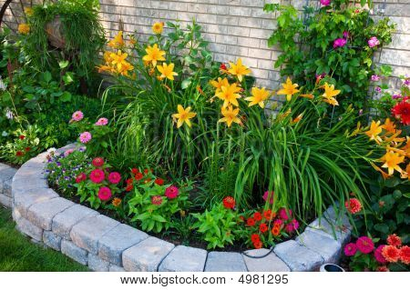 Lily Flower Bed With Images Small
