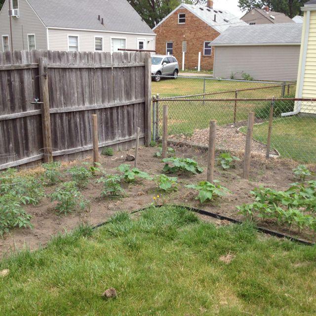 Garden part 2