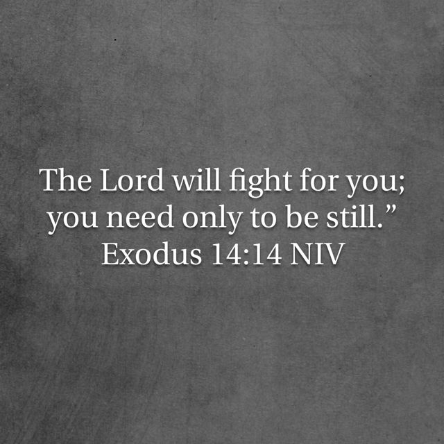 Gospel Quotes Delectable Pin By Diana Cardenales On In God We Trust Pinterest Exodus 48