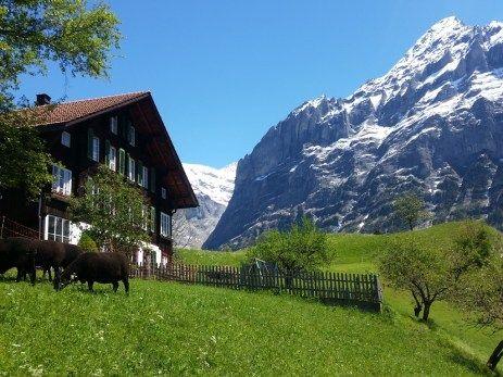 Grindelwald, Zwitserland, Switzerland