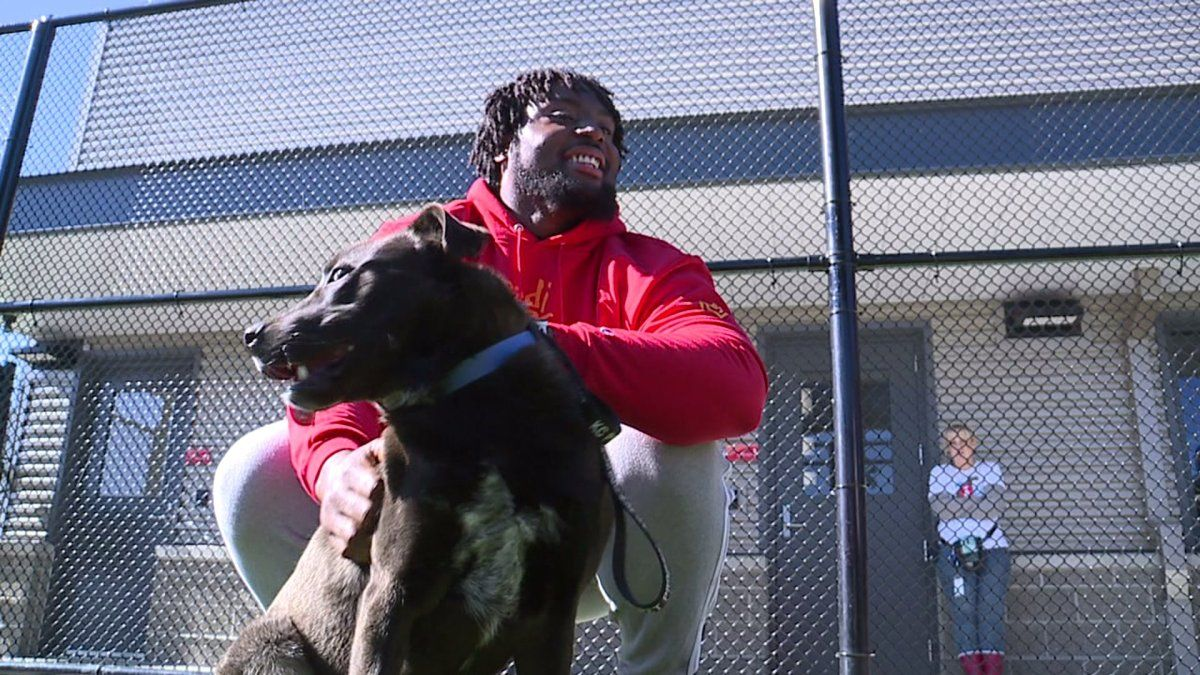 'I've always loved dogs' Chiefs' Derrick Nnadi sponsors