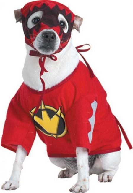 Power Ranger Ensemble For Jordan S Dog Smokey Pet Costumes