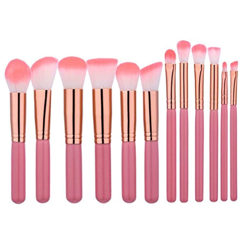 Powder Brush Set,Molie 12 Pcs Pink Make Up Brushes Blush