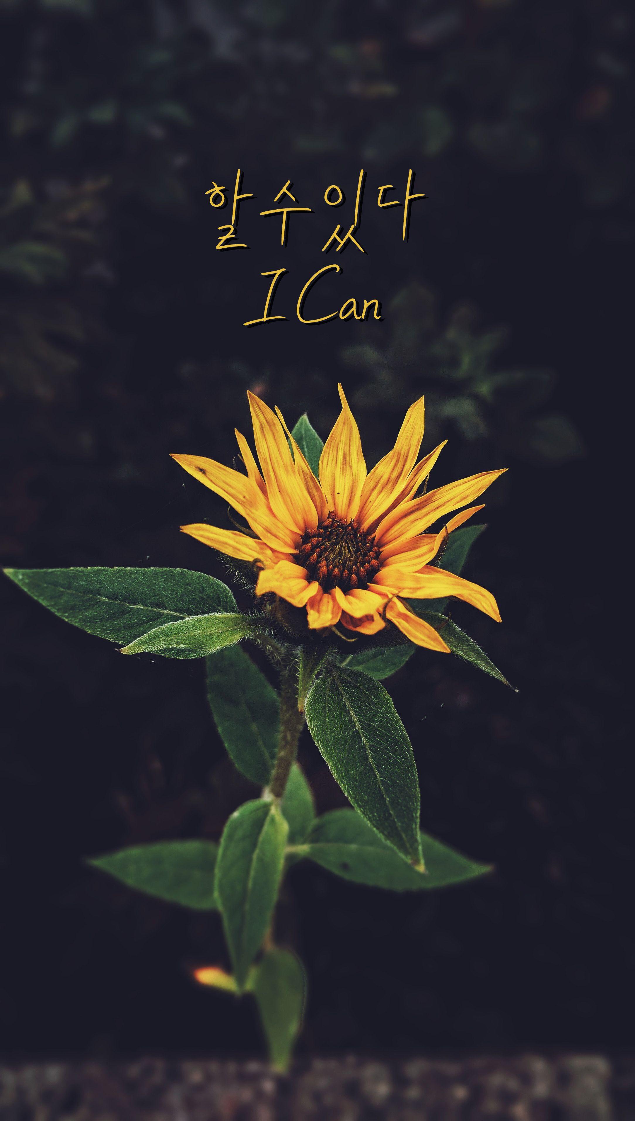 할수있다 I Can Fotografi alam, Latar belakang, Bahasa korea