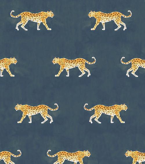 Panthera Black Cheetah Wallpaper Prints Wallpaper